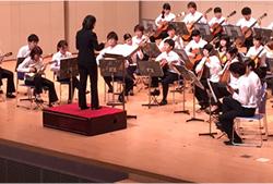 イタリア発祥の個性的な弦楽器